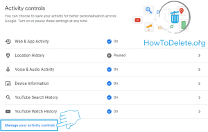manage activity controls setting for permanent history delete